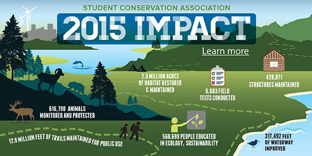 2015 Impact banner image