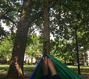 Meridian Park in DC