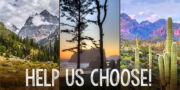 Help Us Choose