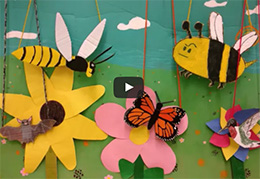 Pollinator Puppet video