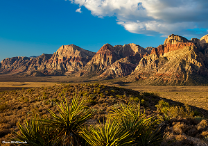 Red Rock Canyon photo