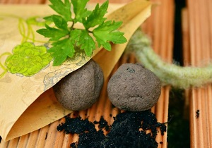 Seed Ball Photo