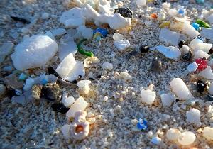 Microplastics—A Macro Problem