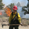 Wildland Firefighting internships
